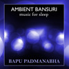 Bapu Flute - Stay Calm - Part
