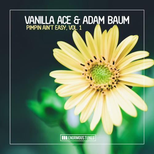 Vanilla Ace & Adam Baum - True Confession (Radio Mix)