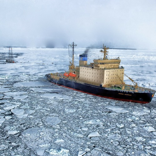 The Future of the Arctic