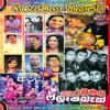 Flash Back - Hiru Tv Mega Blast Narammala 2015 - Mp3