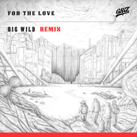 GRiZ For The Love (Big Wild Remix) Artwork