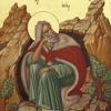 Cuvânt de învățătură la Sărbătoarea Sfântului Prooroc Ilie Tesviteanul, 2014