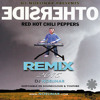 OtherSide - Dj Noelinar (Remix) - Red Hot Chili Peppers