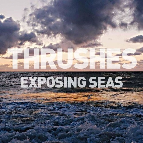 """THRUSHES ~ """"Joan Of Arc"""" (From 'Exposing Seas'; OUT: 9/18/2015)"""