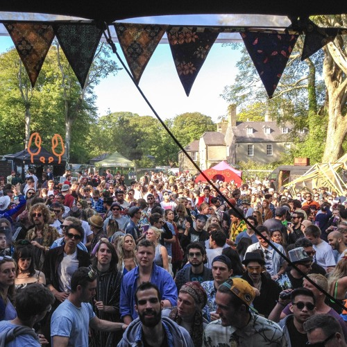 Move D - Disco Set @ Gottwood Festival