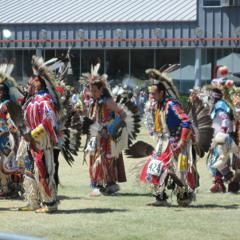 Iron Horse(mens Grass) @ wild horse powwow 2015