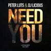Peter Luts & DJ Licious - Need you (Preview)
