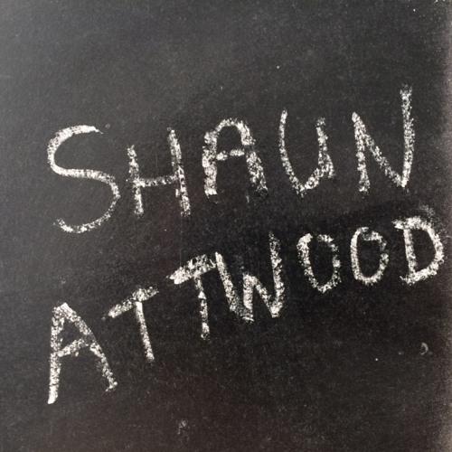 GBA 218 Shaun Attwood