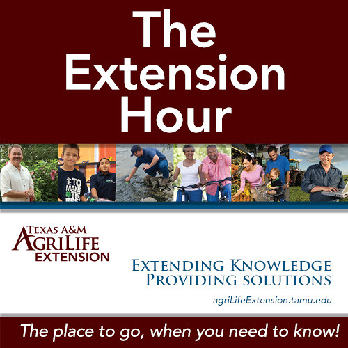 The Extension Hour - Montgomery County Extension Office - Every Friday at 1PM