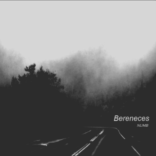 Bereneces - Pulsar