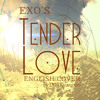 EXO - Tender Love (Acoustic English Cover)