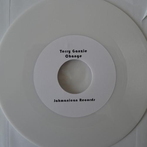 Terry Ganzie - Change (How High riddim)