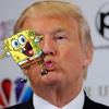 Podquisition Episode 35: Donald Trump's Spongebob Sex Issue