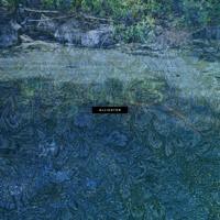 Carroll - Alligator