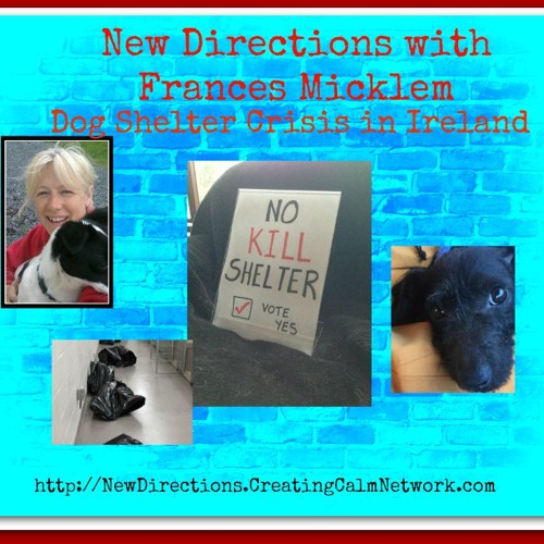 New Directions with Frances Micklem - The Dog Shelter Crisis in Ireland