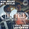 Mt.Doyle And WesBeanz - Tall Tree Music Festival 2015