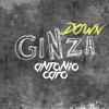 Antonio Caro - Ginza (J Balvin) Down House