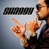 "Shaggy ""Strength Of A Woman"" (Hip Hop Remix) by DJ Red"