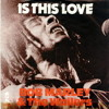 Is This Love- Bob Marley and The Wailers (multi-track mix)