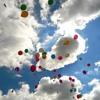 99 Luftballons - Nena  (avec Crisscross)