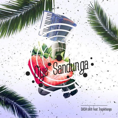 ELFM035 - Dash Slktr ft. Tropikhongo - Oye Sandunga (Sonidos Profundos Dub Remix)