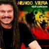 Nengo Vieira Shalom DJleo