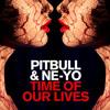 Pitbull, Ne - Yo - Time Of Our Lives *Remix*