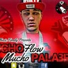 Jowdy El Mago Del Ruido - Mucho Flow Mucho Palabreo