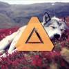 KSHMR - Dogs (Original Mix) Feat. Luciana (PandoraBeats.com)