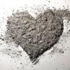 Ashes (Jimena & Matthew Wilson)