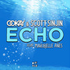 Ookay & Scott Sinjin - Echo (Rena Remix)(BUY-FREE DOWLOAD)