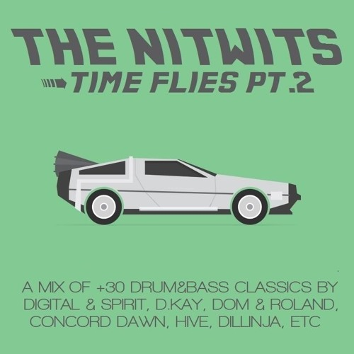 The Nitwits - Time Flies Pt 2 (D&B Classics Vinyl Mix)