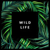 Kevin Hunter - Wild Life