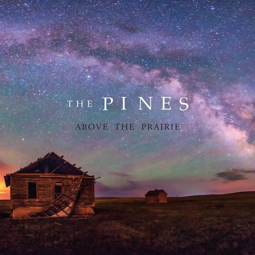 Aerial Ocean - The Pines