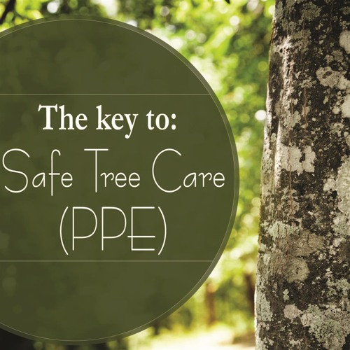 The Key to Safe Tree Care--PPE