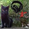 Pop Wildlife - (DARDO CULEN).mp3