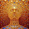 E11: Energetic Technologies and Healing the Self with David Ian Cowan