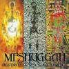Meshuggah - Vanished (Techno cover)