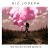 The Killers - Mr. Brightside (Nic Joseph Remix)