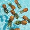 Pineapple Pool Party (Sango taught me)