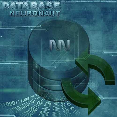 Database by Neuronaut