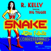 R. Kelly Feat. Big Tigger - SNAKE [JF Funky Drummer Remix]