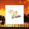 David Guetta - Hey Mama (Nysveen & Nilzen Remix)
