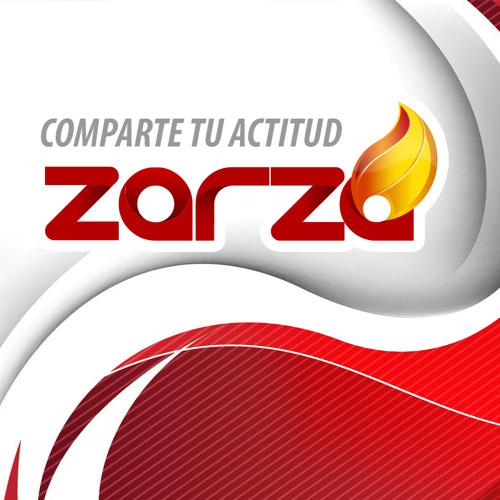 Comparte Tu Actitud Zarza