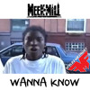 Meek Mill - Wanna Know (Drake Diss) (DigitalDripped.com)