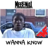Meek Mill - Wanna Know (Drake Diss)