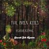 The Paper Kites- Featherstone (Sweet Job Remix)
