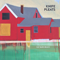 Knife Pleats - One Step Too Far