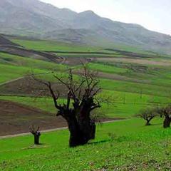Botan kurdish melody               نغمههای کردی بوتان