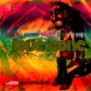 Restricted Zone - Love Zone Vol.2 (Lovers Rock Reggae)